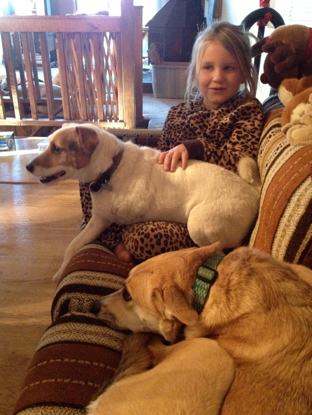 Ava and the dogs, waiting for turkey.